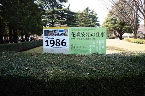 _4020233.JPG