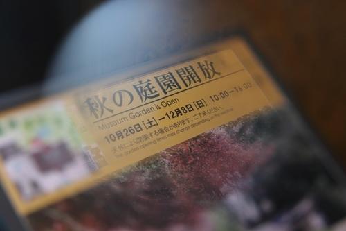 IMG_1004.JPG